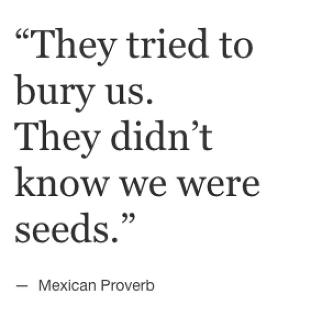 """They tried to bury us. They didn't know we were seeds."""" — Mexican Proverb"""